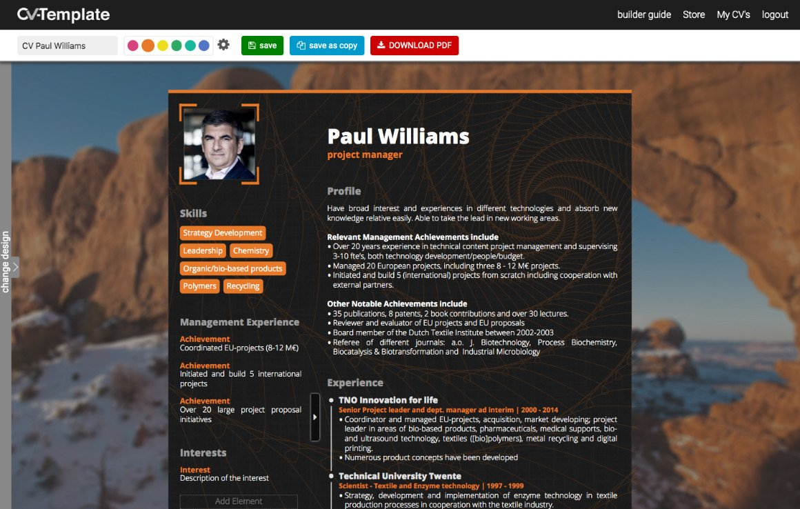 Professional CV template builder