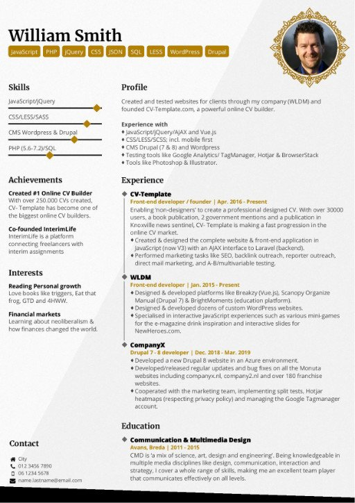 Proffesional Resume Template from www.cv-template.com